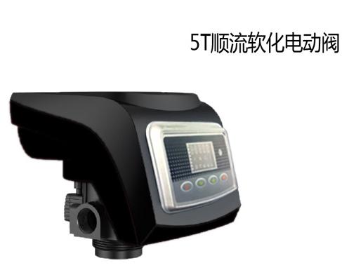 诚峰阀—水处理系统用控制阀5T顺流软化电动阀
